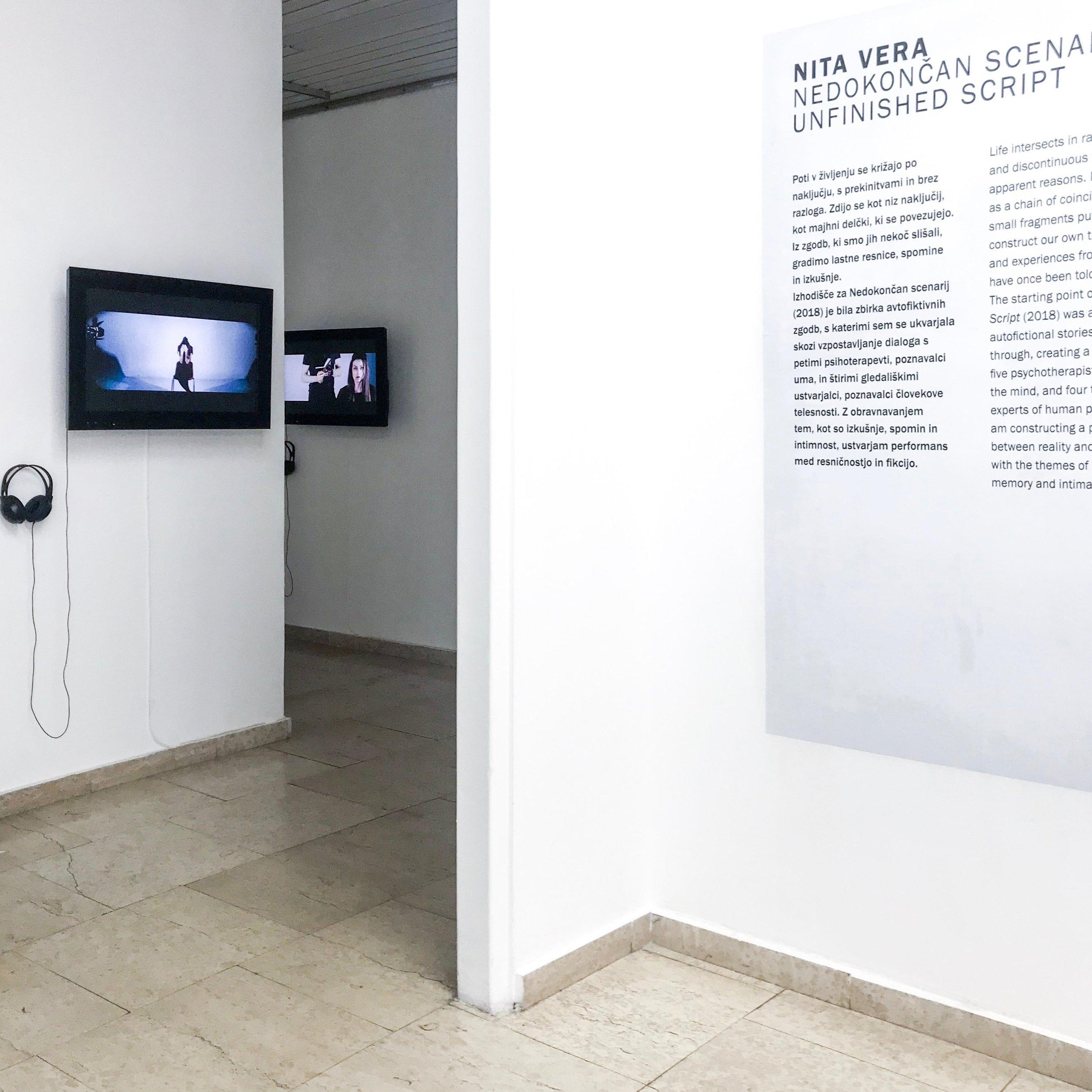 Rarely True Never Simple, 2018 UGM Maribor Art Gallery