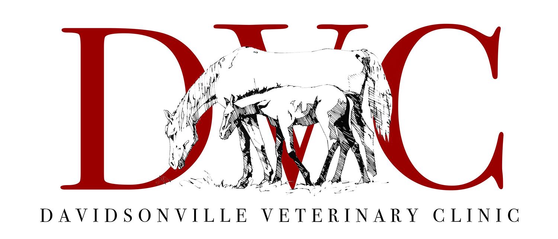 DVC_2016_logo.jpg
