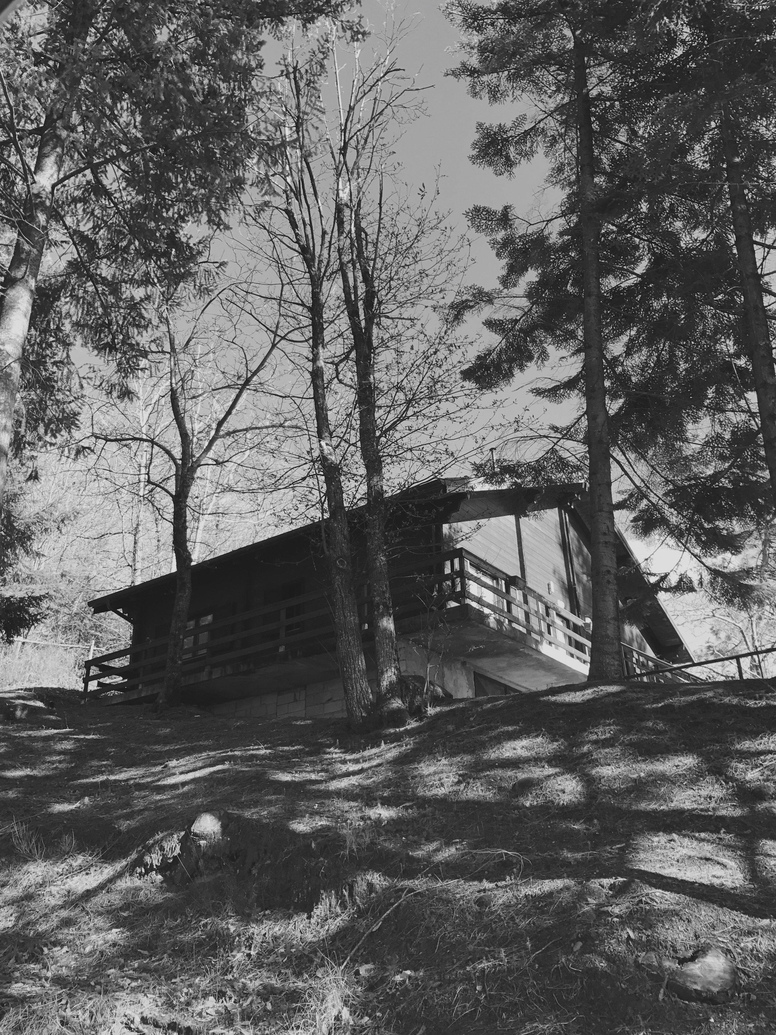 bungalow 04.jpg
