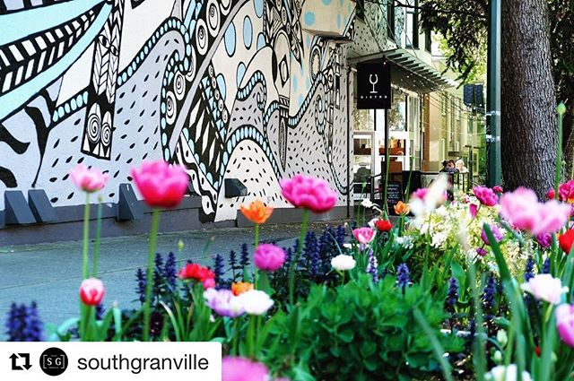 Wow!! 30 years of Business Improvement Areas (BIAs) in Vancouver.  #shopdunbar  #Repost @southgranville with @get_repost ・・・ GIVEAWAY ALERT! This week we are celebrating 30 years of Business Improvement Areas (BIAs) in Vancouver! BIAs are specially funded business districts that promote and improve their areas through various marketing, street enhancement, and advocacy programs. @southgranville is 1 of 22 BIAs in Vancouver! #BIA30YearStrong  We're teaming up with our fellow BIAs to give one lucky winner a basket full of goodies - gift cards and unique products from each of our coolest #neighbourhoods. Basket valued at $500+  Here's how to enter: 1) Follow @southgranville + 4 other BIAs (all are tagged in the photo) 2) Tag a friend you want to share the giveaway with in the comments.  Giveaway closes 11:59 Sunday April 7th.
