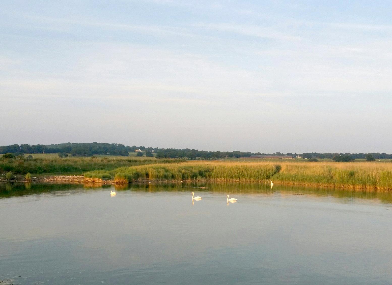 The River Arun at Tortington