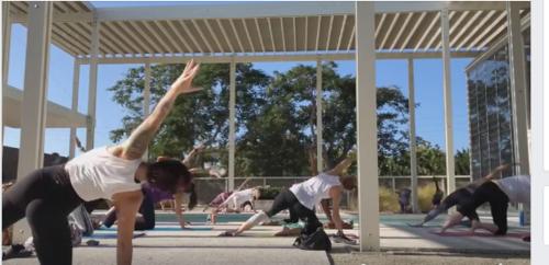 MOD yoga.png