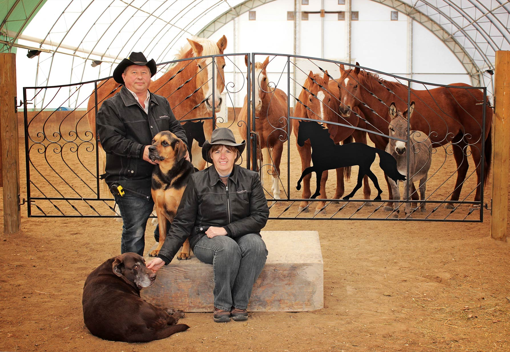 Francine Labossiere and Dan Benson with their family of dogs and the many horses they have rescued over the years.