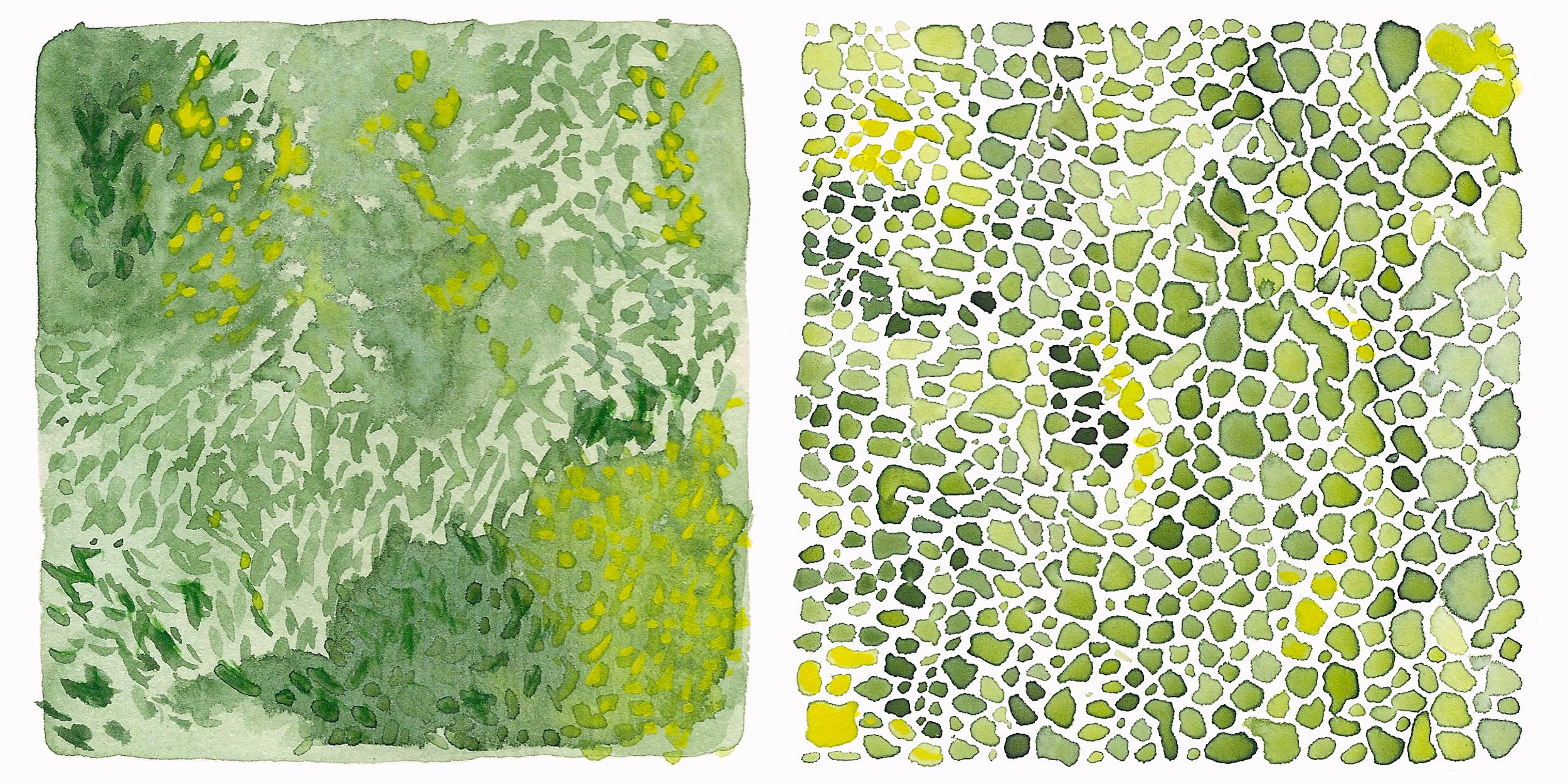 green-study-ii-2500x1250.jpg