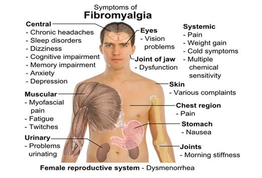 fibromyalgia-symptom-graphic.jpg