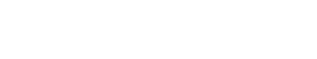 WHITE Transparent 2.png