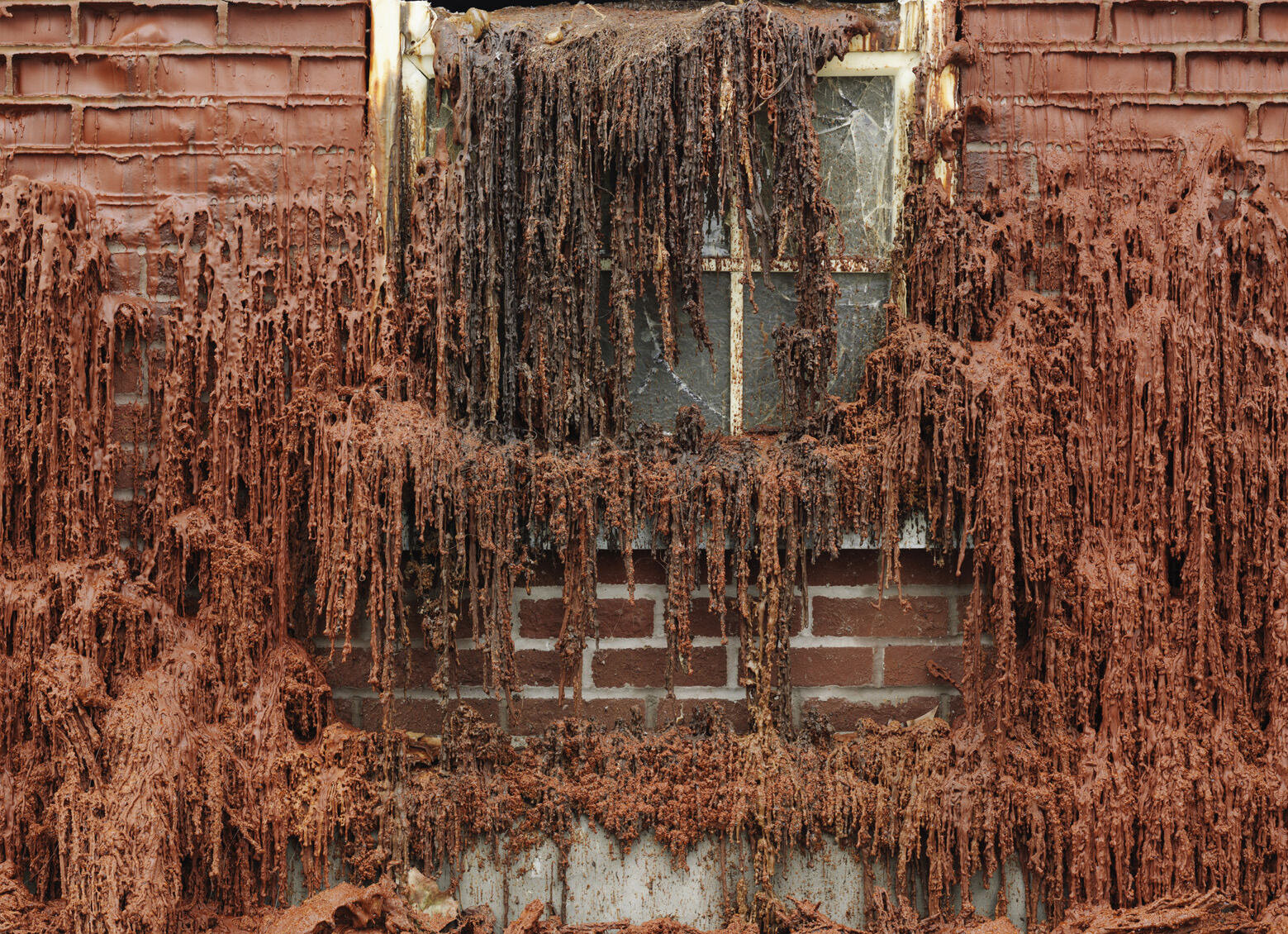 11. Alex Chinneck - A pound of flesh for 50p - Image by Chris Tubbs.jpg