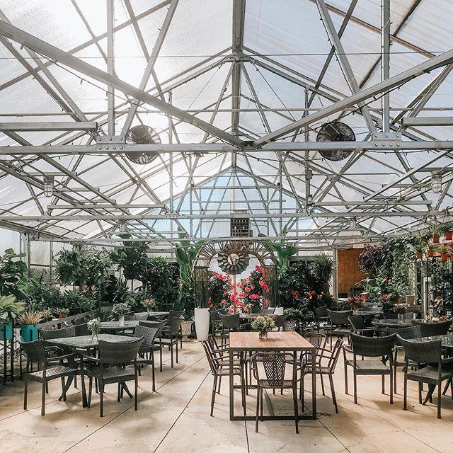 Greenhouse wedding? Yes please ✨💛