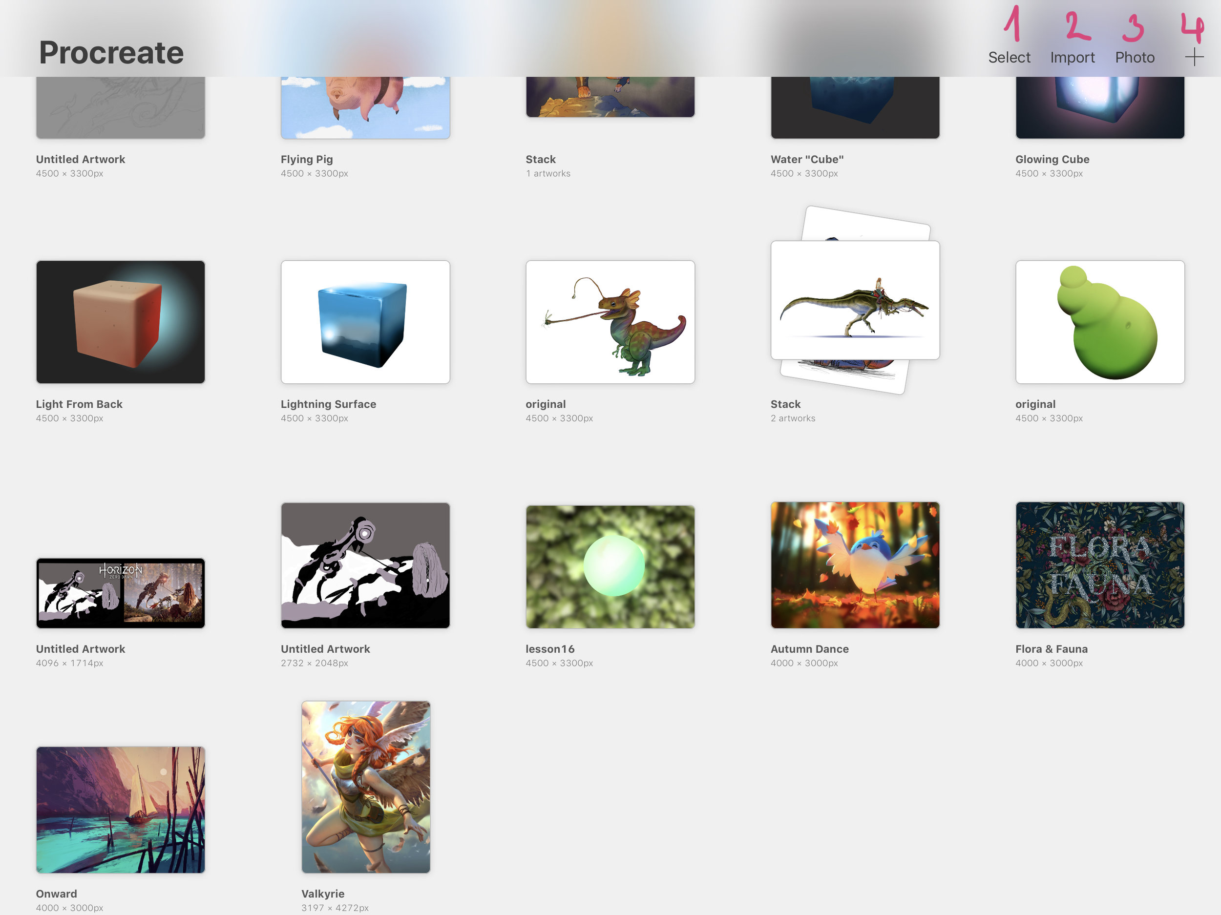 procreate-gallery-overview