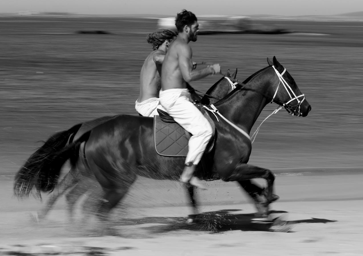 kult magazine horses.jpg