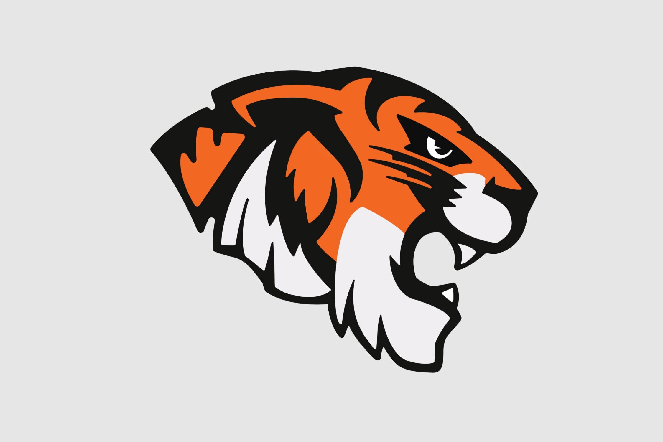 TIMOTHY TIGER - Timothy Tiger became the official Wasatch Academy mascot in 2019, yet the iconic Tiger has represented our school in various forms since the late 19th century.