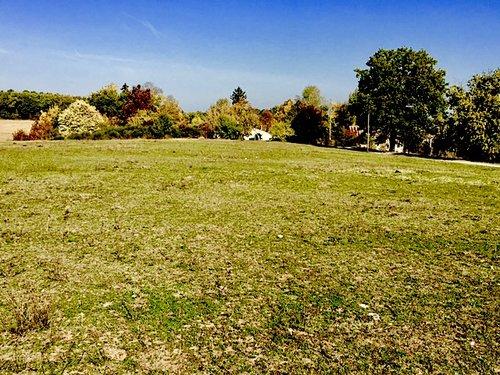LC.Panorama+(1) (1).jpg