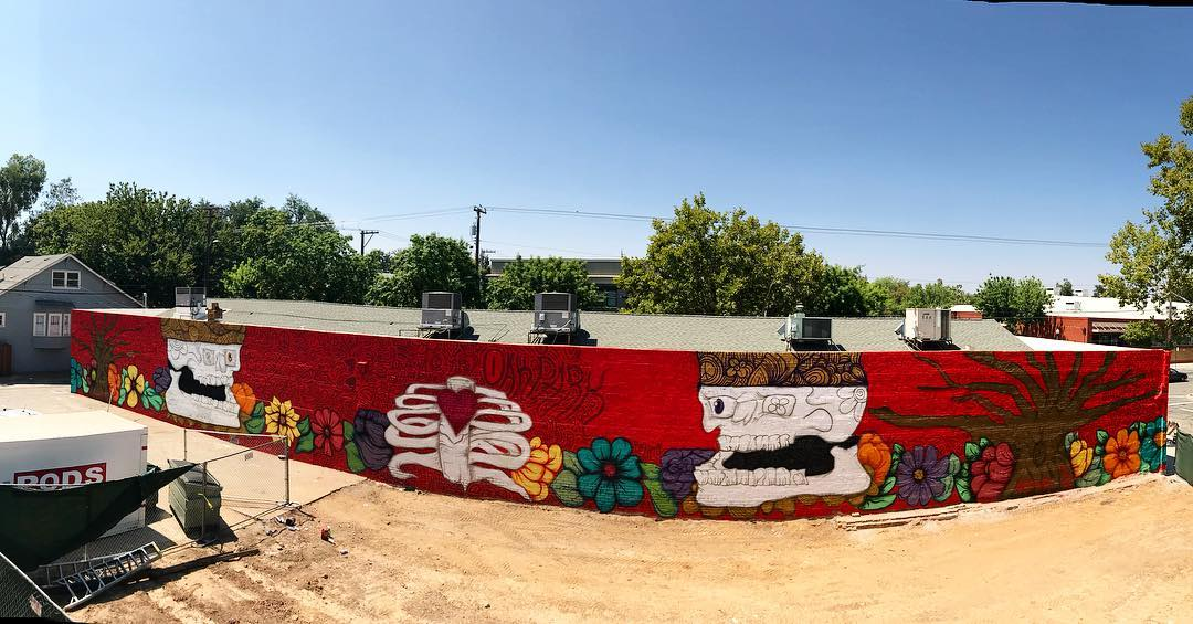 Home Is Where the Heart Is, 15' 150' Acrylic and Spray Paint on Brick Wall, Wide Open Walls Mural Festival, Oak Park, Sacramento, 2018.jpg