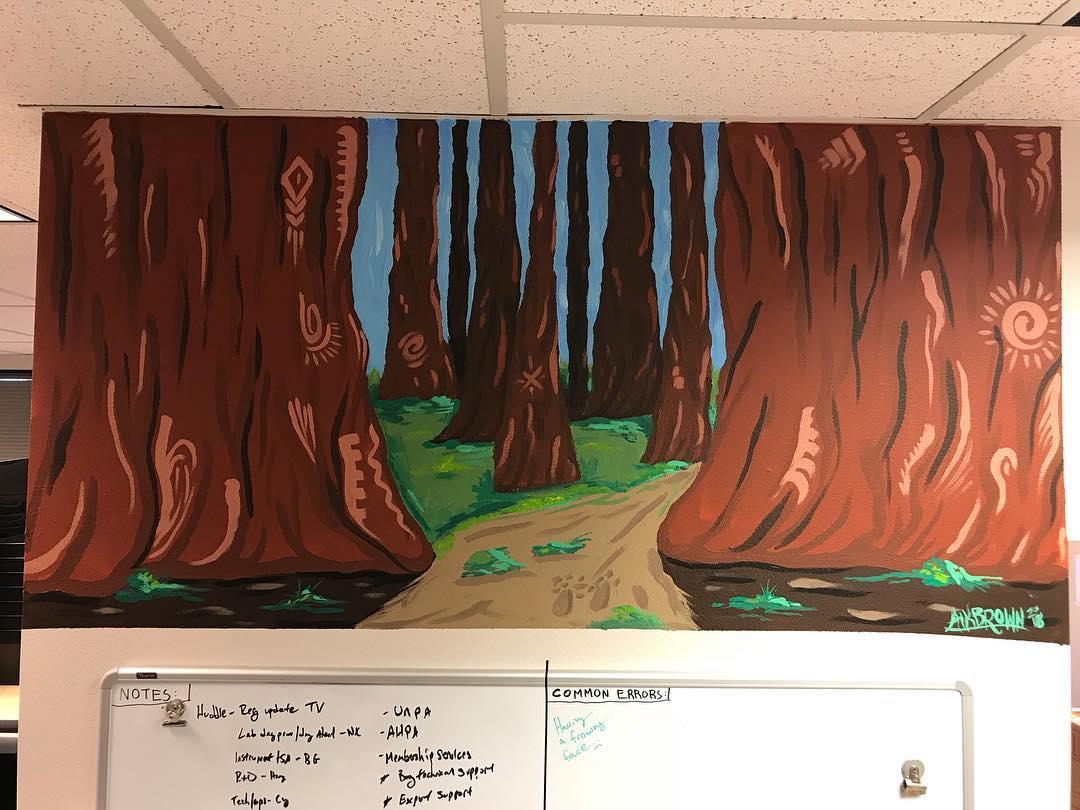 Looking Beyond the Redwoods, 2.5' x 5', Acrylics on Orange Peel Textured Wall, 2018.jpg
