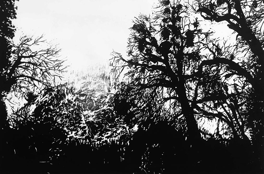 snowy-yosemite.jpg