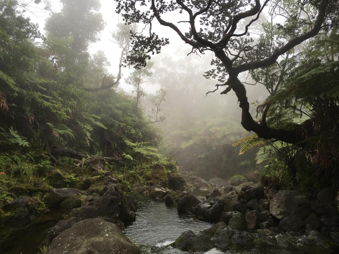 Waterfalls, Big Island