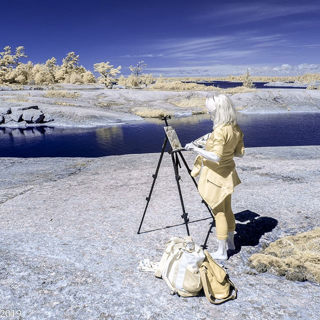 Painting in another world ! American Camp Island..thanks to the eyes and the infrared lens of Stephen Morley ! #georgianbaylandtrust #gblandtrust #georgianbaypaintings #collingwoodartist #tremontstudios