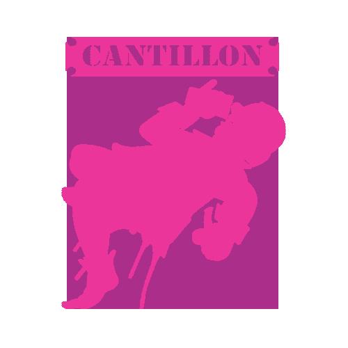 PINK CANTILLON.png
