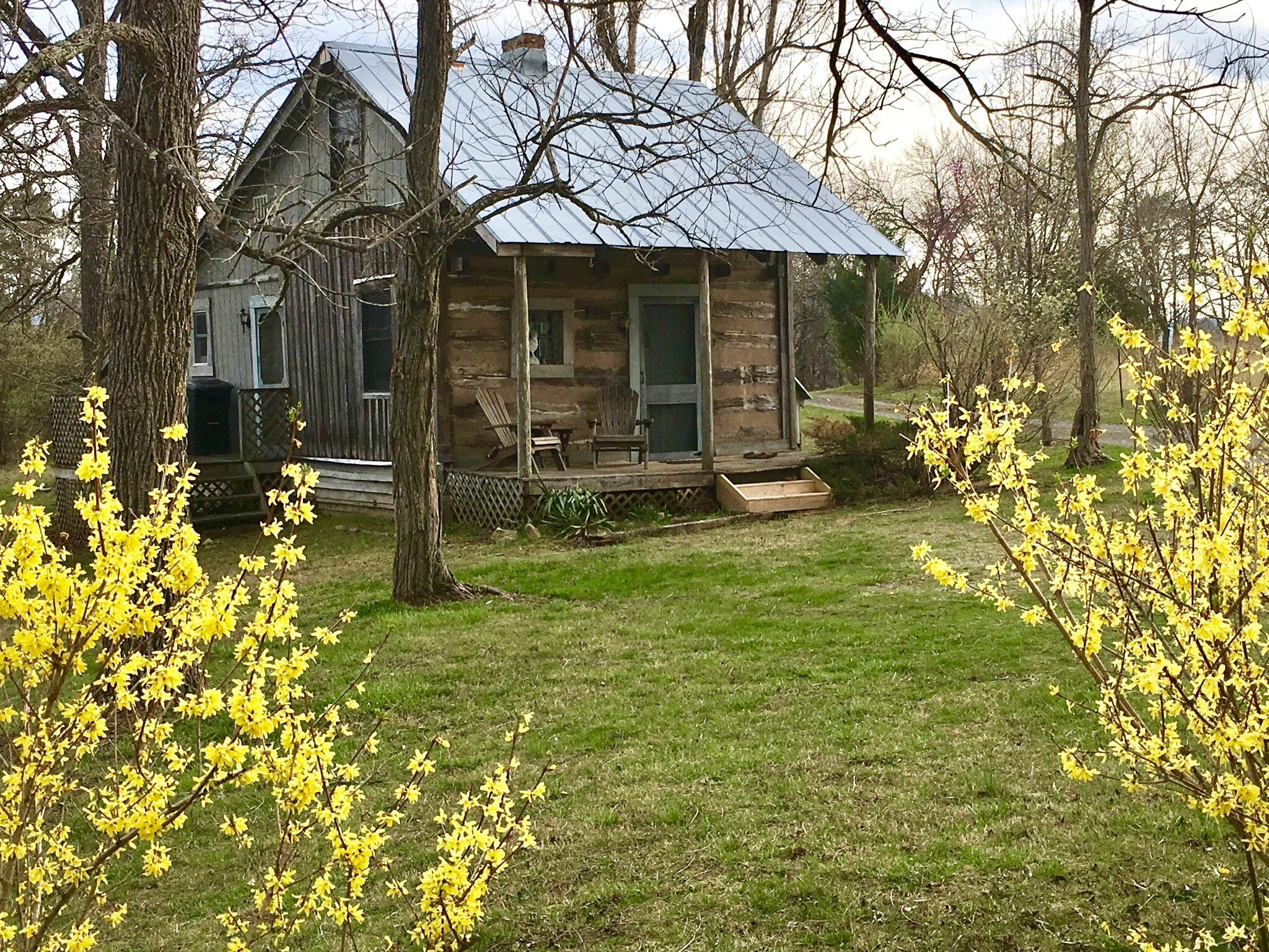 Antonia Albano   Writer's Retreat   Cabin   Spring.jpg