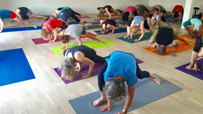 3 cyril yogi's past events in denmark.jpeg