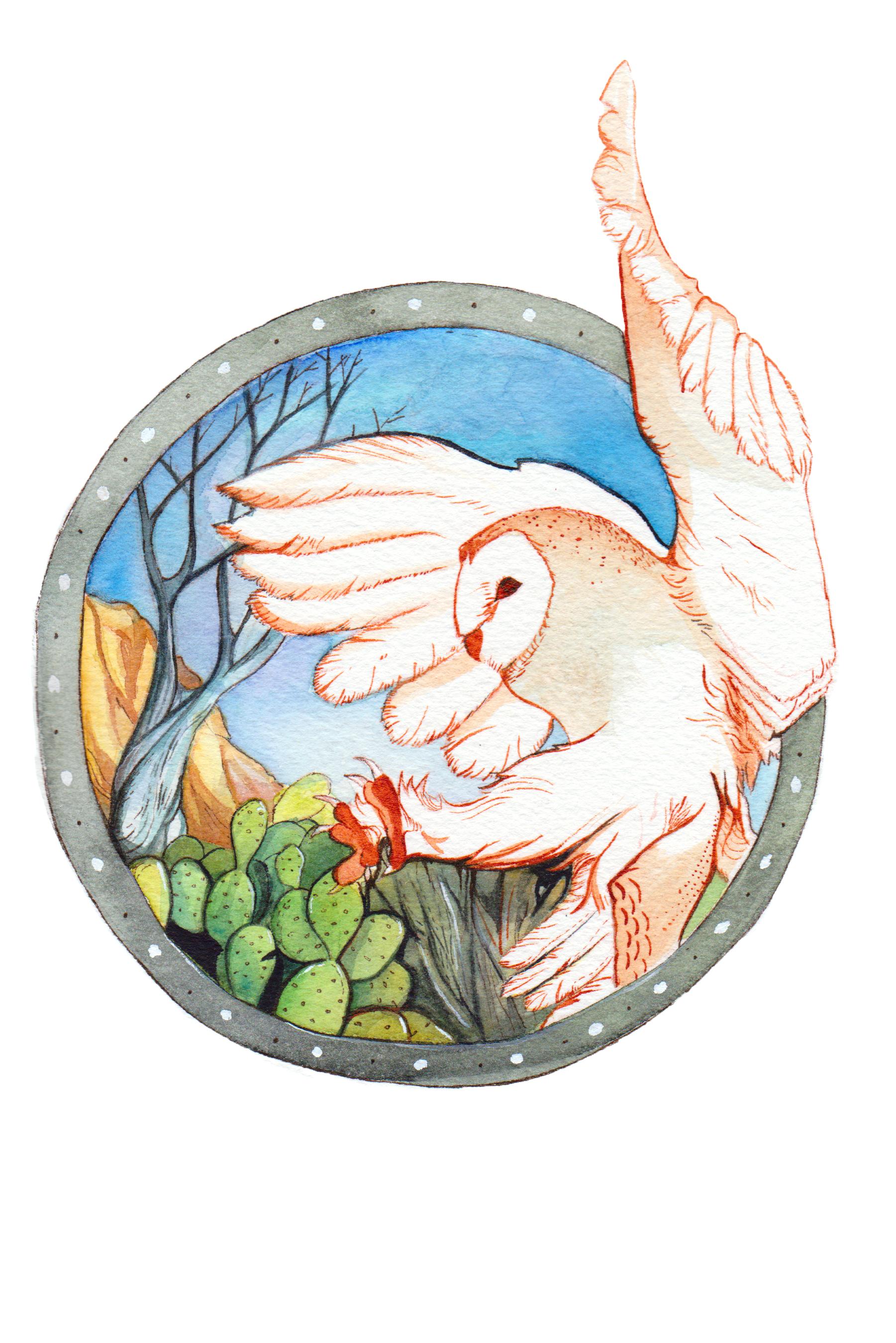 Lechuza - Watercolor