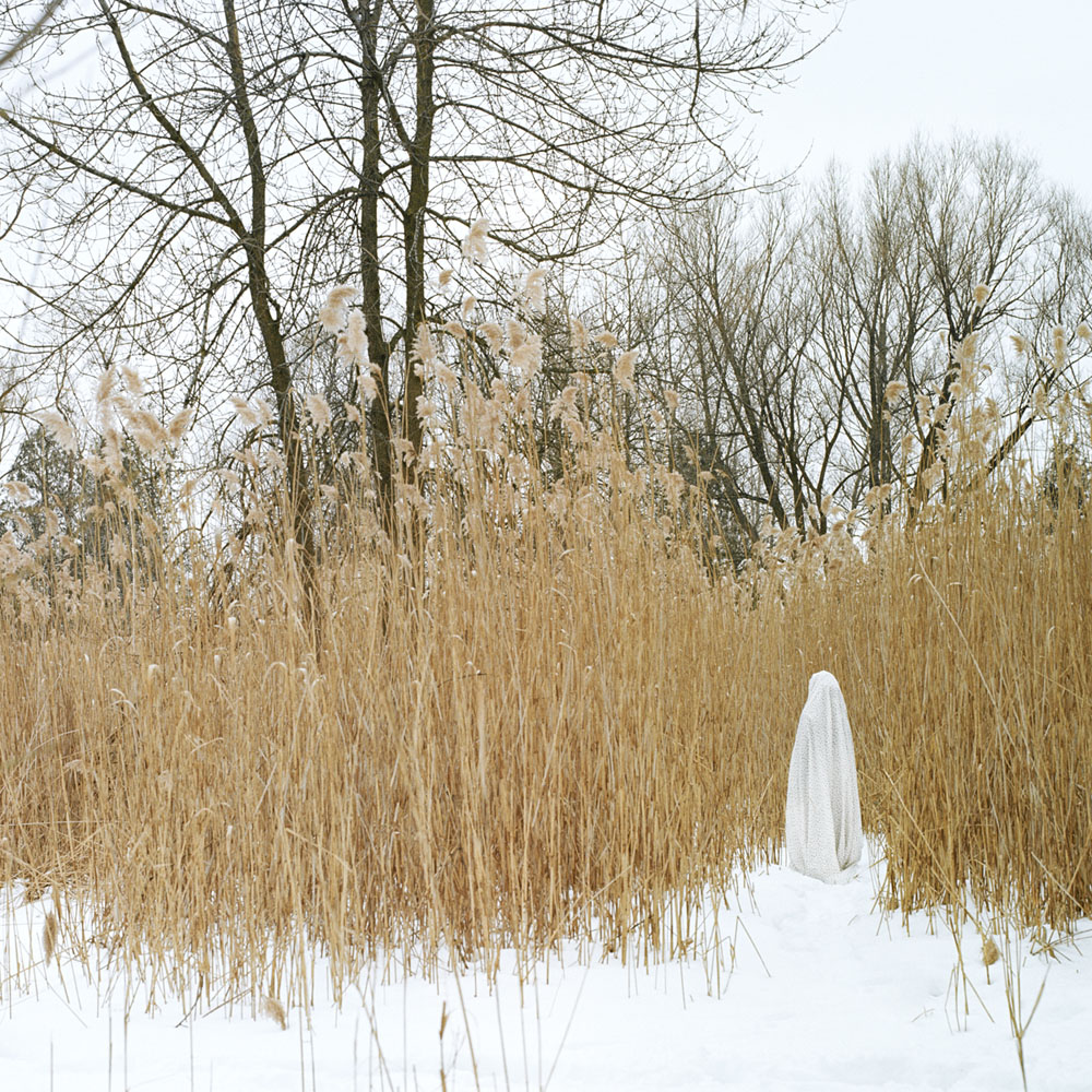 Wheat_small.jpg