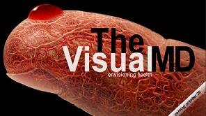 visual+web+md.jpg