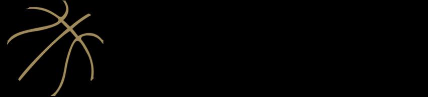 nbpa logo.png
