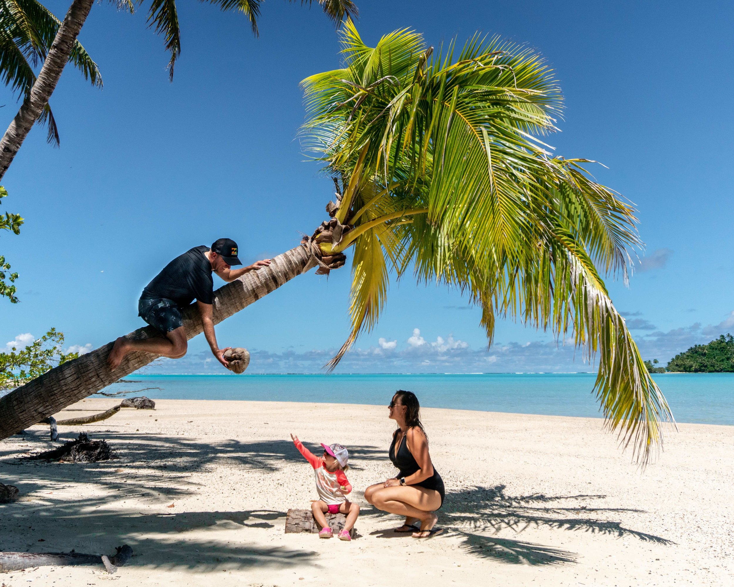 Family hanging from palm tree_about us.jpg
