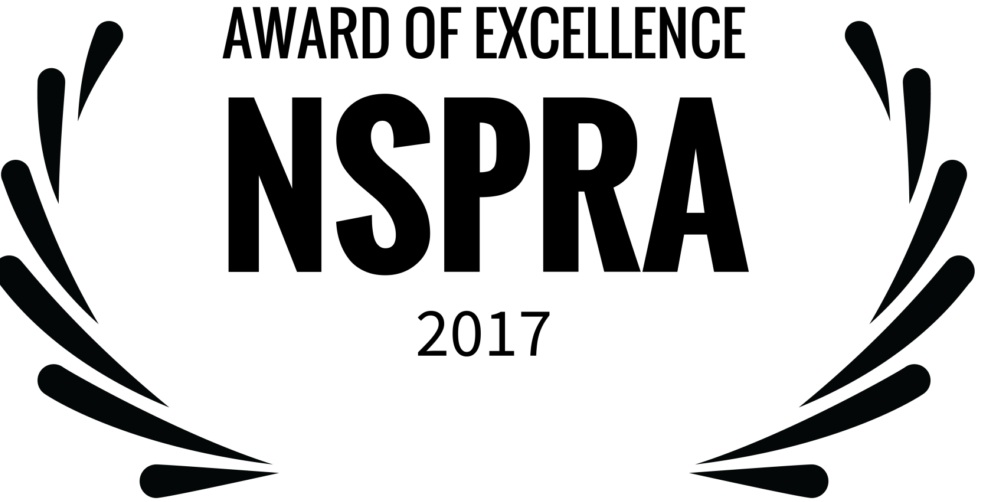 AWARD-OF-EXCELLENCE-NSPRA-2017-2-e1555096821495-1024x519.jpg
