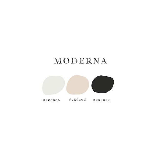 One of the palettes from this months assets 🎨 clean | modern |  unique - check how to use color codes on today's stories 🖤