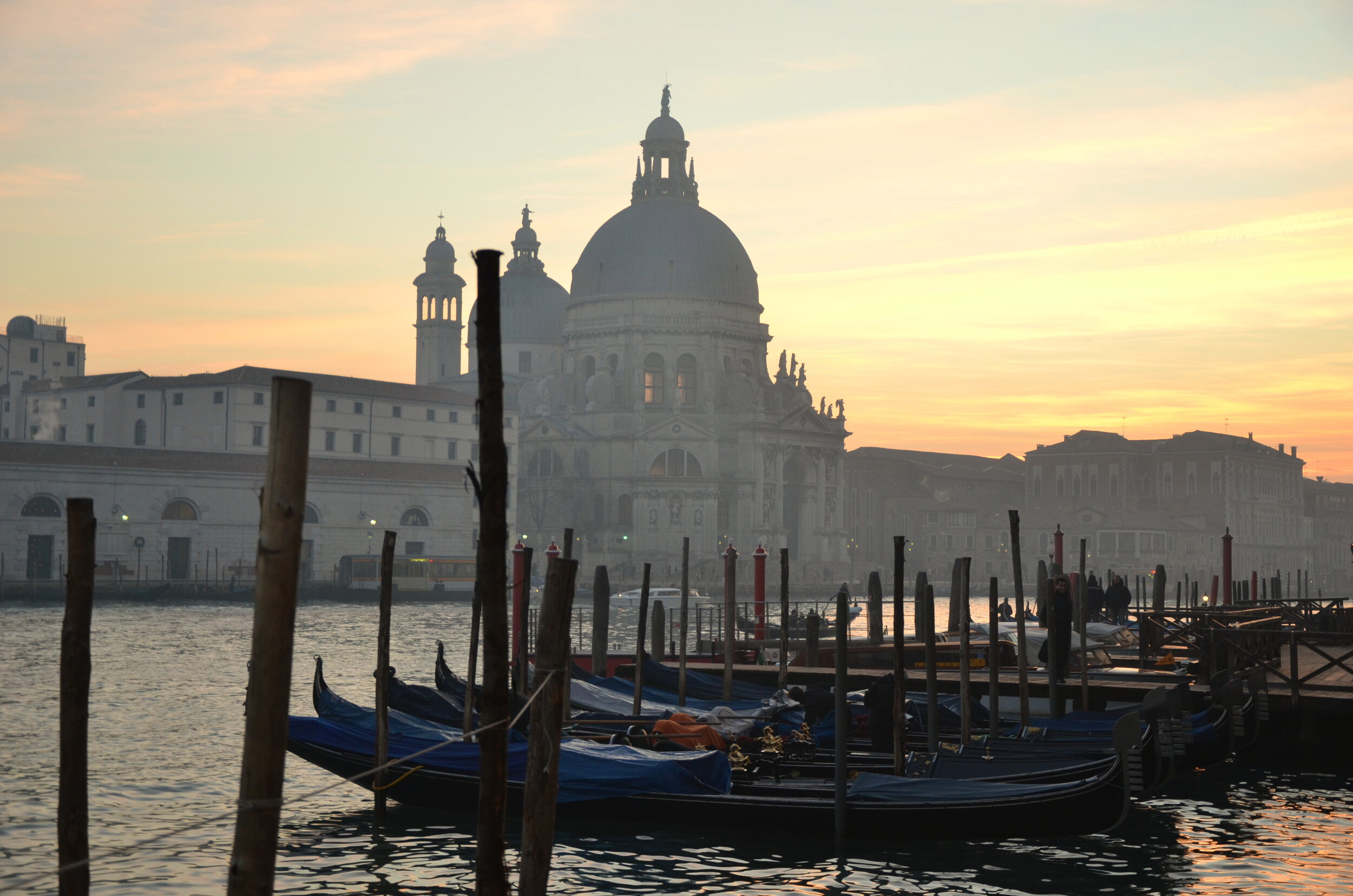 Salute and Gondolas, Venice