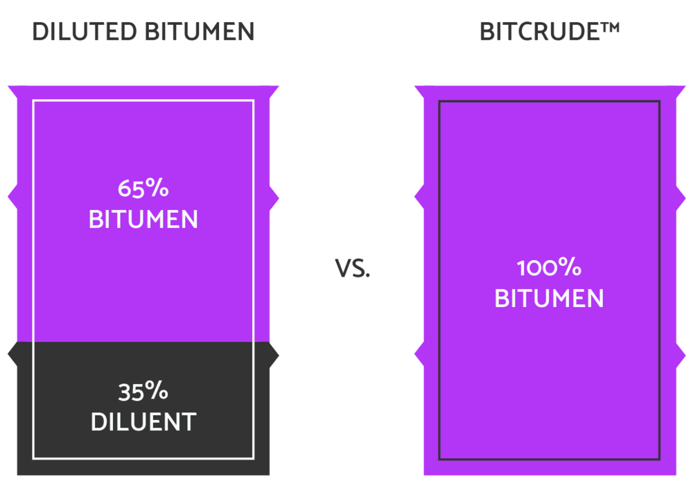 BitCrude Graphics Purple White-04-01.png