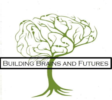 Building Brains and Futures - was founded after the Alberta government collected early developmental data on the kindergarten children in Alberta and identified children in Lethbridge as scoring below Alberta norms and Alberta's children as scoring below Canadian norms. A committee with representatives from two school divisions, the University of Lethbridge neuroscience department, and other early-learning groups was established in order to equip families and improve kindergarten readiness for children. After studying current research, committee members adopted a curriculum of activities that aimed to improve children's executive function skills. The simple activities were easily incorporated into classroom routines, and the curriculum was implemented at four early-learning sites within the city. Children were tested before and after participating in the program.It became clear that children who were exposed to the curriculum experienced an increase in executive function and self-regulation scores, relative to developmental norms.