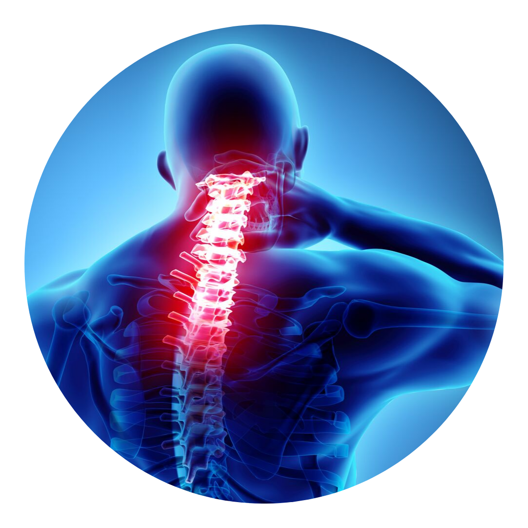back pain boerne