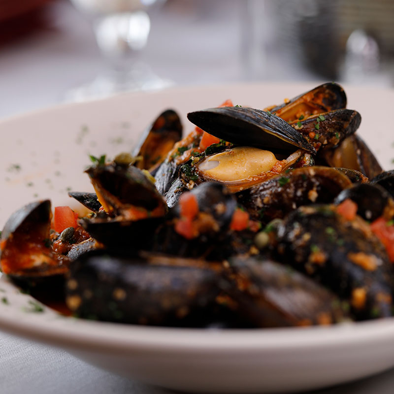 bistro-mussels-square.jpg