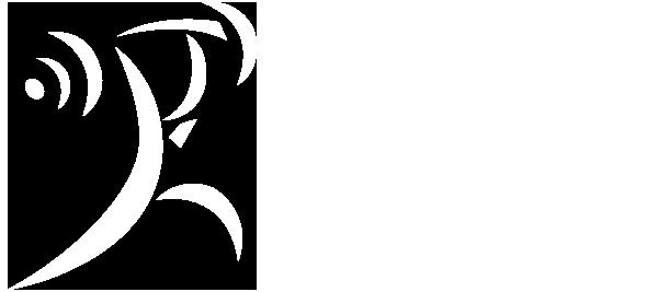 IWF.logo.white.600.png