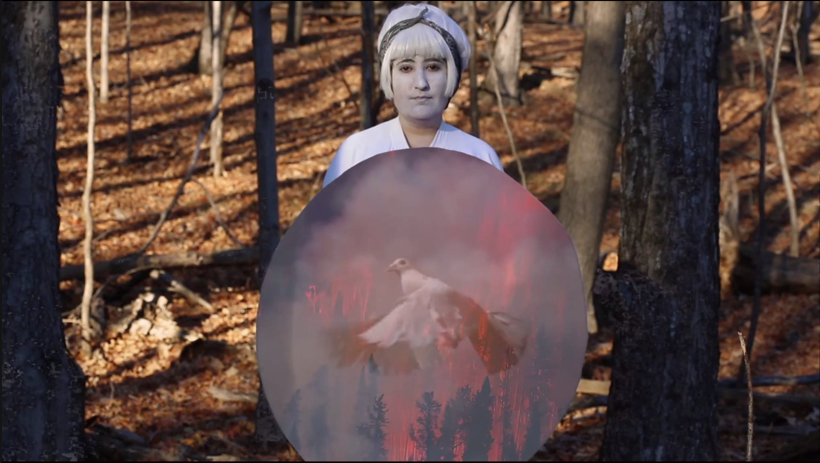 Magic Meadow Baba (performing white clown) - An exploration of one of my deceased fathers many stories of exile and refugee life. Told through the gaze of his daughter and her inability to translate. Filmed in upstate New York and green screened out of doors. (2017)Link to Video: https://vimeo.com/150205579/1fc5e4d145Link to writing I did about the piece for HEKLER:https://www.hekler.org/hekler-medium-war-memory-protest-thoughts-by-sahar-s