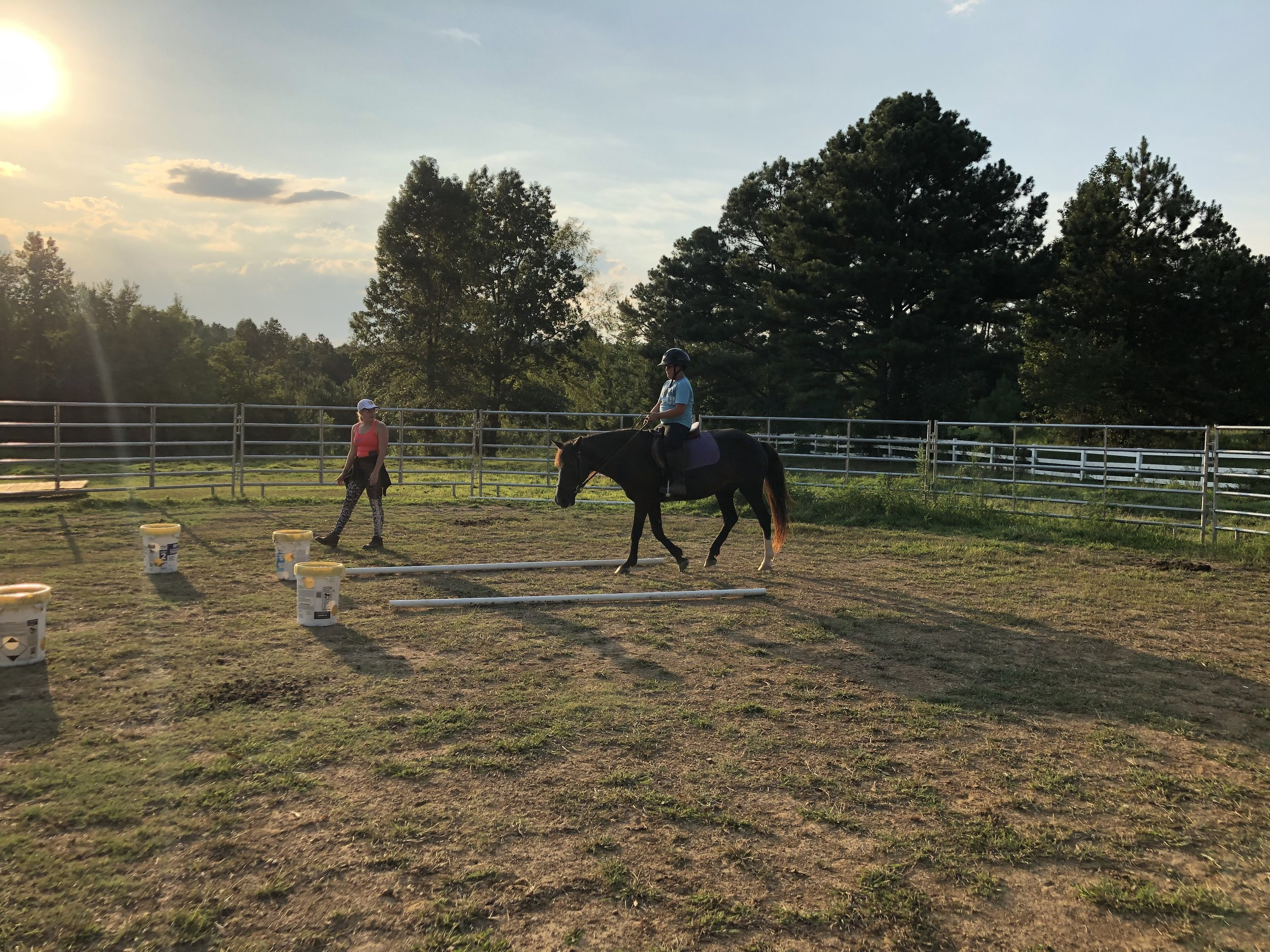 Book a Lesson. Help a Cause. - 50% of proceeds from riding lessons support our mission to reach traumatized children, and families through Equine Therapy.Cost $50