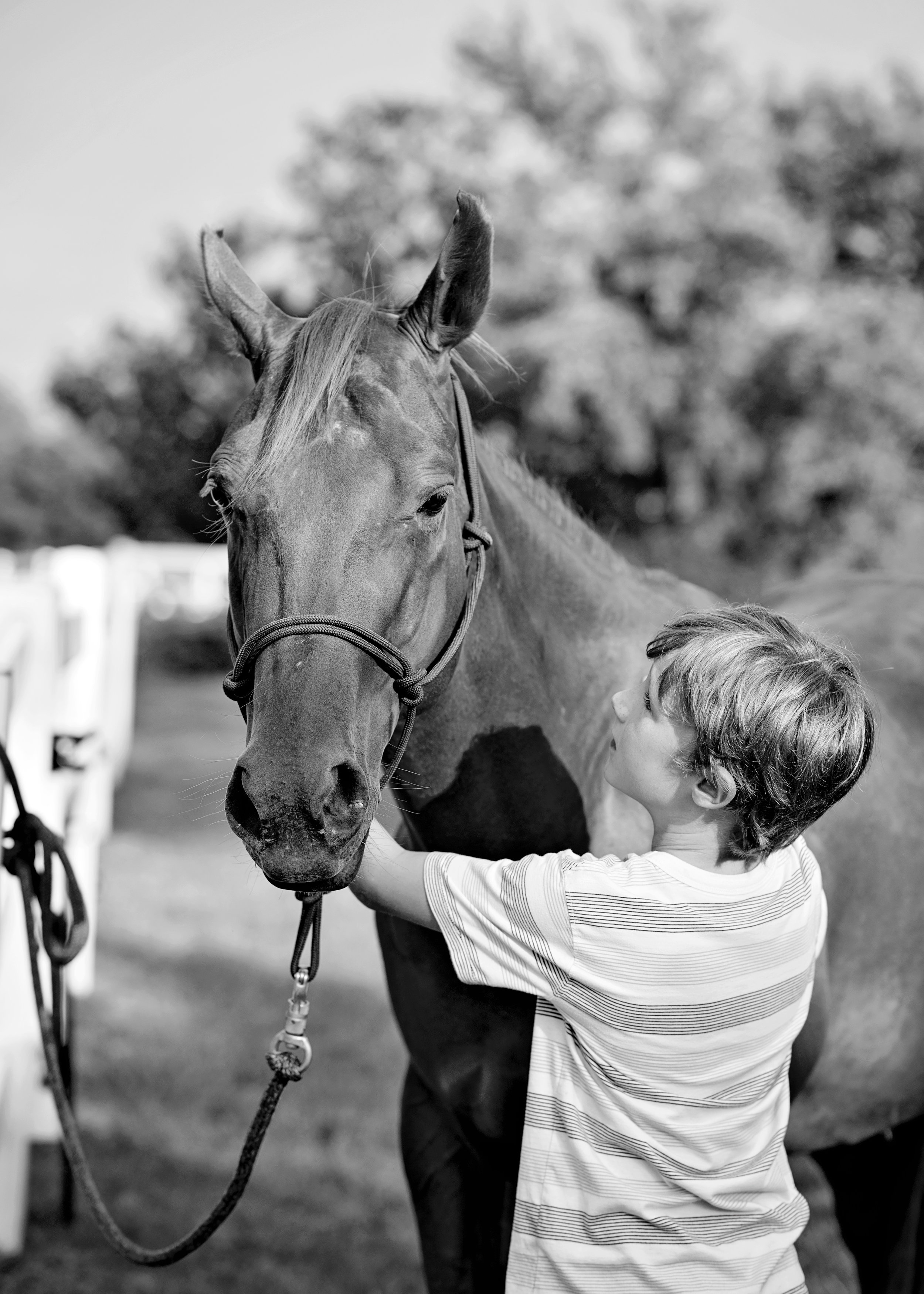 What is Equine Assisted Psychotherapy (EAP)?In EAP you have horses. The horses could care less what people say or what they don't say.  They use their superpower, reading body language. I tell my young clients its real life Spidey sense, or Horsey sense.How do we as human tap into that super power? It takes a team, of client, therapist, and horses. The trained therapist and certified EAP horse professional observe your interactions with the horse.  The horse cannot lie.  Its reactions are 100% honest.  The you'll be instructed to do a task with the horse for 20-30 minutes.   After we talk about any observations we had from the interaction.  At that point it's up to you to fill in the why.  This is when EAP steps away from traditional therapy.  You just had a real life experience with a horse. It wasn't a retelling, or reenactment.    You get to the truth faster, meaningfully, and with longer lasting impact with EAP.                                                -