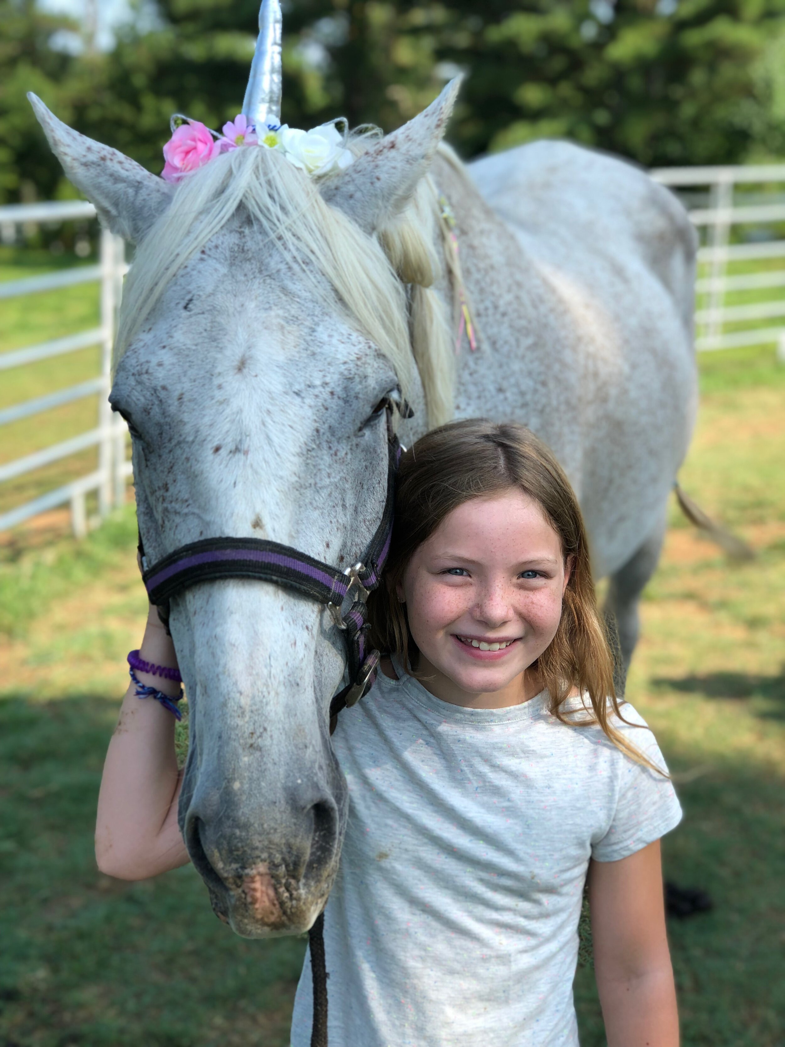 What is Equine Assisted Psychotherapy (EAP)?In EAP you have horses.  The horses could care less what people say or what they don't say.   They use their superpower, reading body language.  I tell my young clients its real life Spidey sense, or Horsey sense.	How do we as humans tap into that super power? It takes a team, of client, therapist, and horses. The trained therapist and certified EAP horse professional observe your interactions with the horse.  The horse cannot lie.  Its reactions are 100% honest.  Then you'll be instructed to do a task with the horse for 20-30 minutes.   After we talk about any observations we had from the interaction.  At that point it's up to you to fill in the why.  This is when EAP steps away from traditional therapy.  You just had a real life experience with a horse. It wasn't a retelling, or reenactment.    You get to the truth faster, meaningfully, and with longer lasting impact.   Book Now for your healing and hope journey to start.                                   -