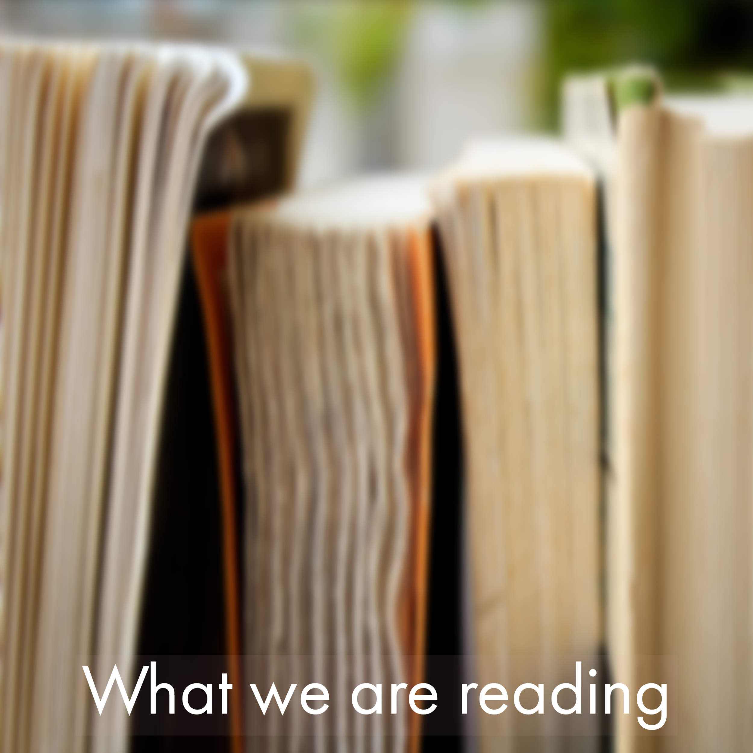 What we are reading link (3).png