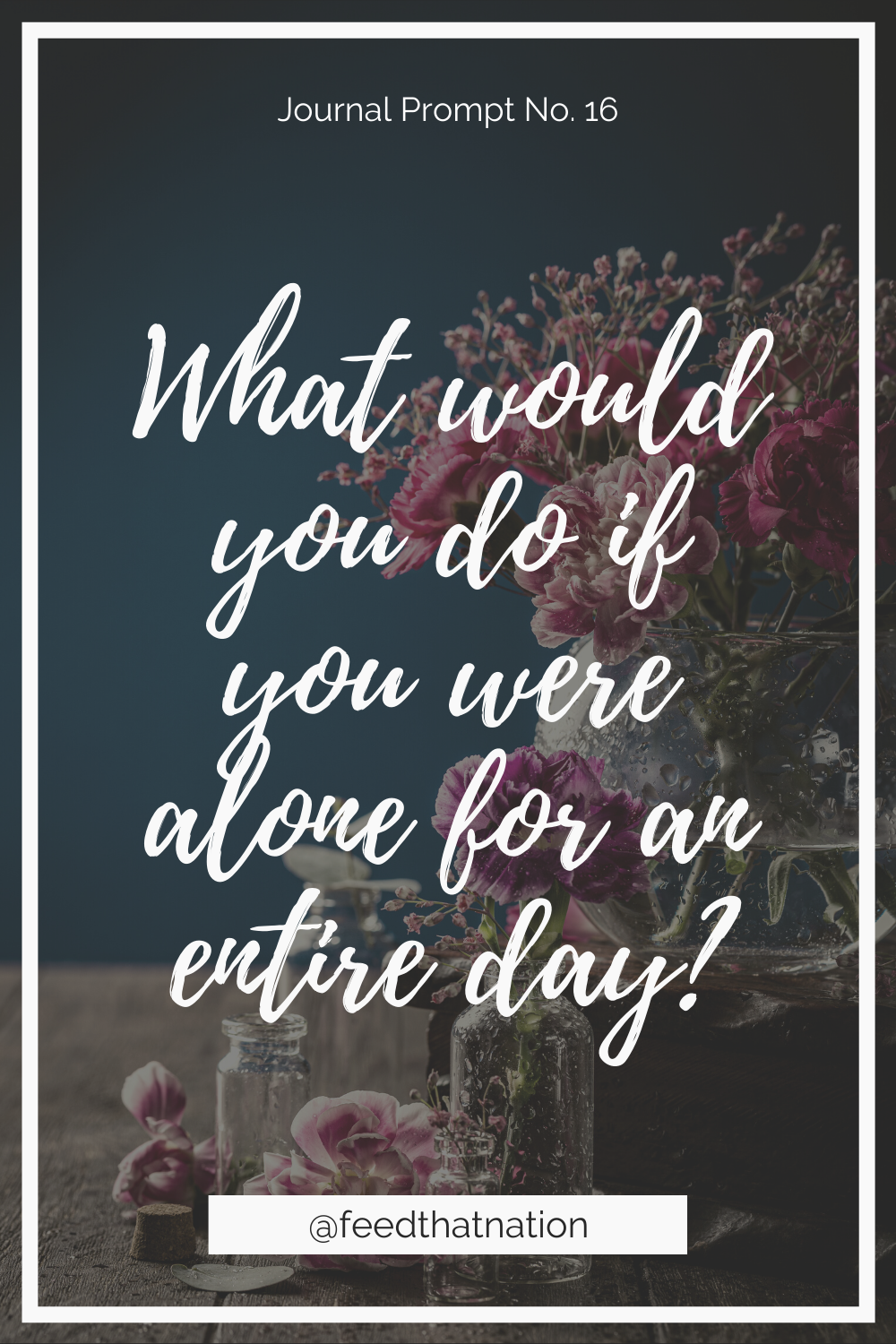 What would you do if you were alone for an entire day