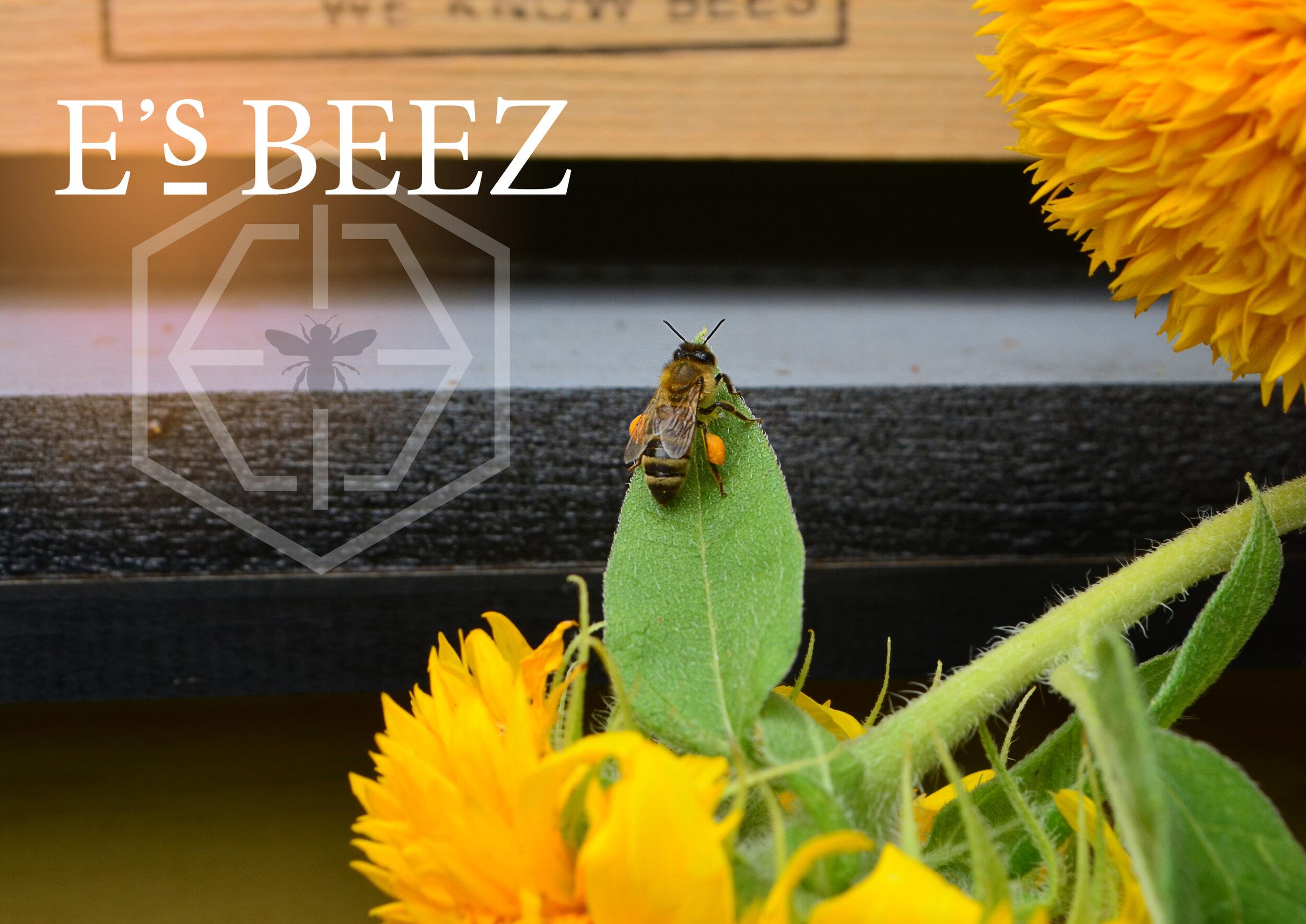 EsBeez_FrontPage.jpg