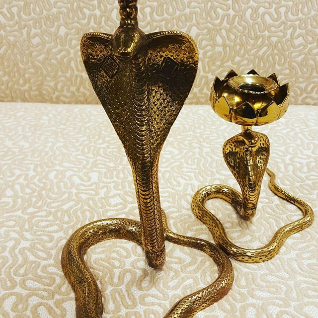 These solid brass, beautifully detailed cobra candlesticks just came in!