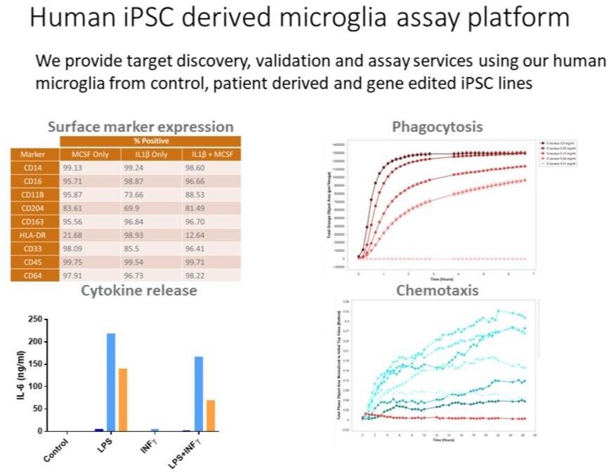 iPSC+microglia+assays.jpg
