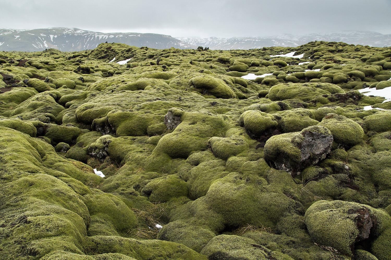 Iceland Proof-4.jpg