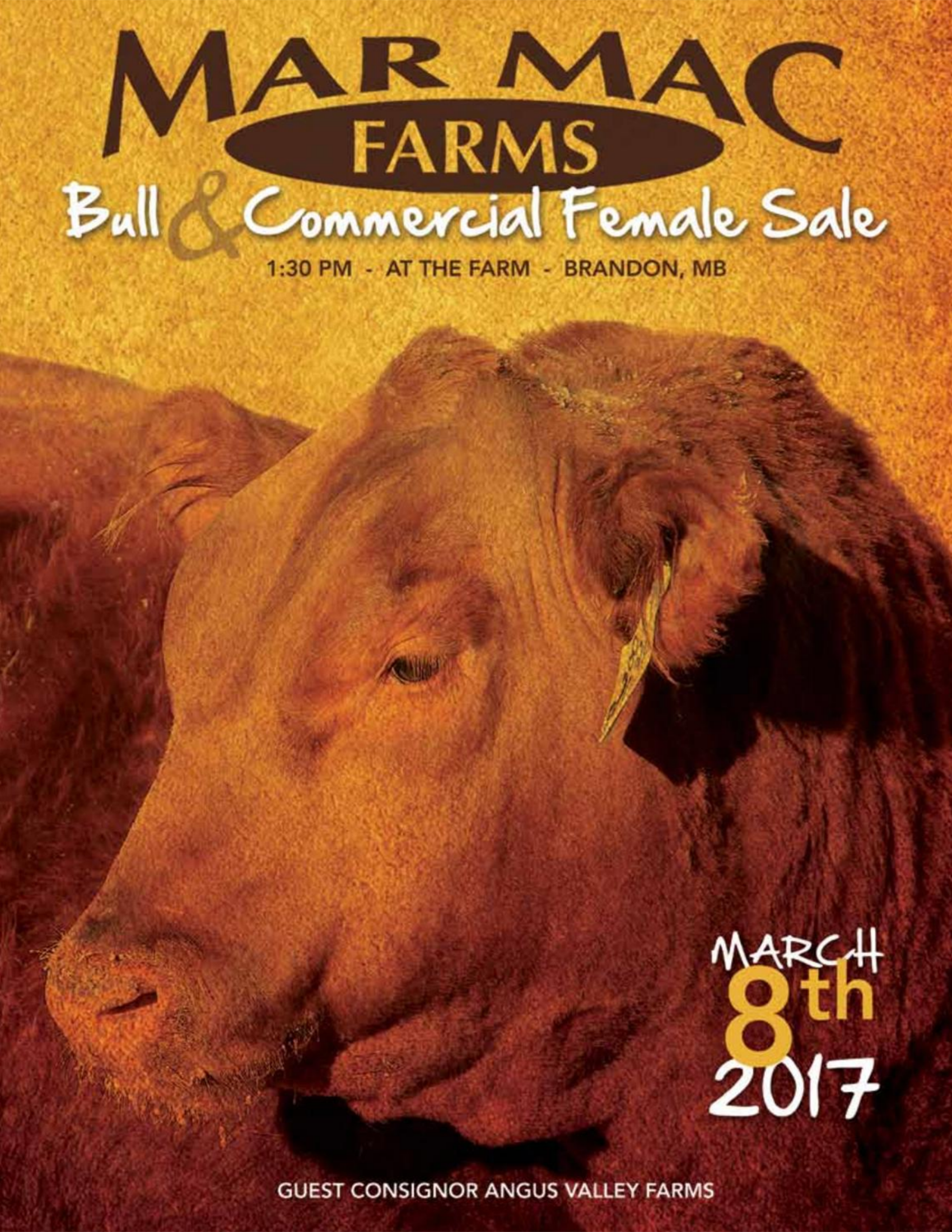 2017 Bull Sale.png