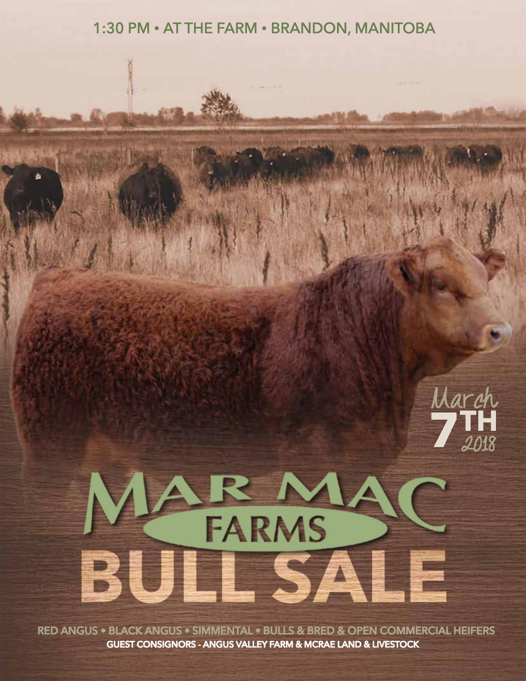 2018 Bull Sale.png