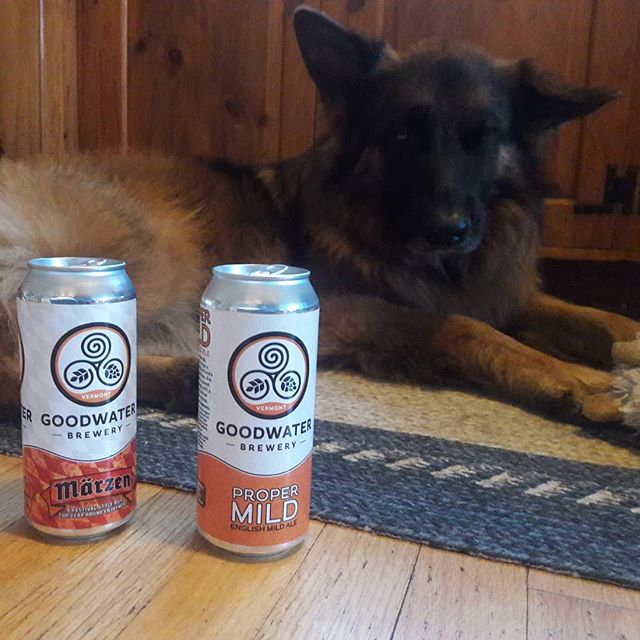Halloween may be over, but fall beers roll on! . . . #CraftBeer #DrinkLocalVT #GoodwaterBrewery #Dogsofinstagram #GermanShepherd #BlackDiamondCanning #BlackDiamondCanstheWorld
